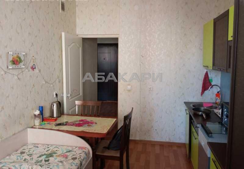 1-комнатная Семафорная Пашенный за 15000 руб/мес фото 8