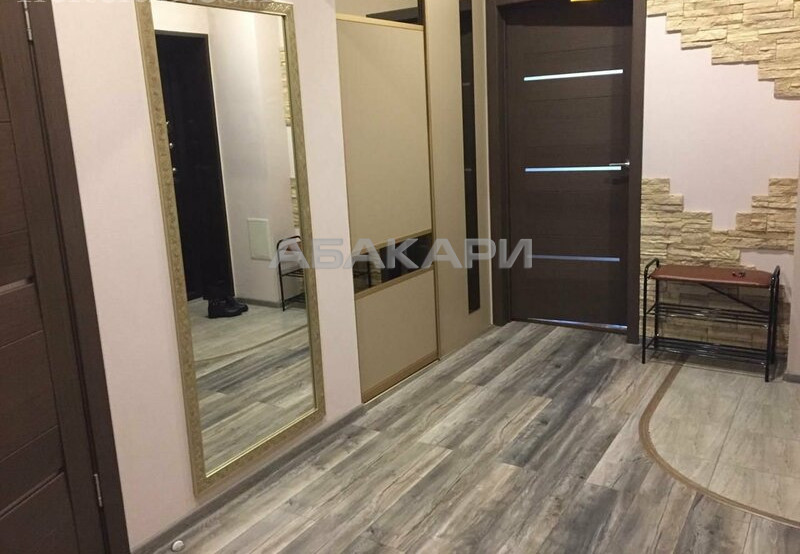 1-комнатная Толстого Новосибирская ул. за 25000 руб/мес фото 5