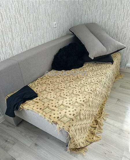 1-комнатная Елены Стасовой Ветлужанка мкр-н за 17500 руб/мес фото 9