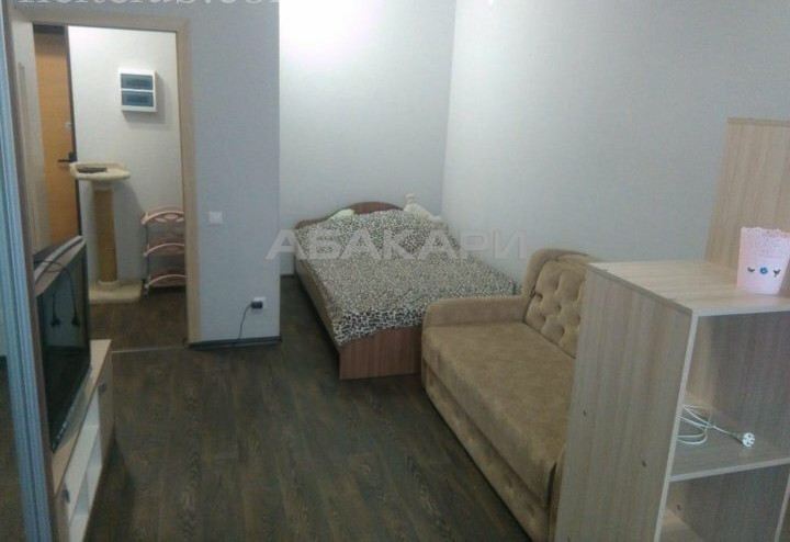 1-комнатная Карамзина Пашенный за 15000 руб/мес фото 11