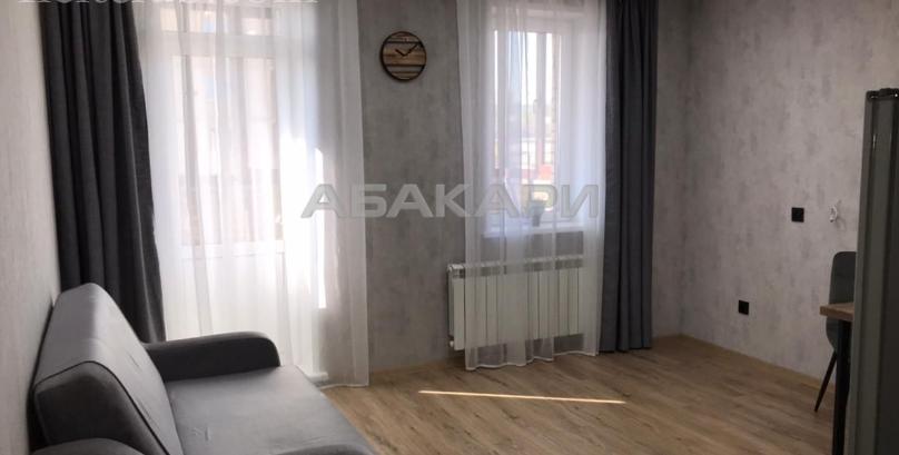 1-комнатная Дудинская Березина за 24000 руб/мес фото 6