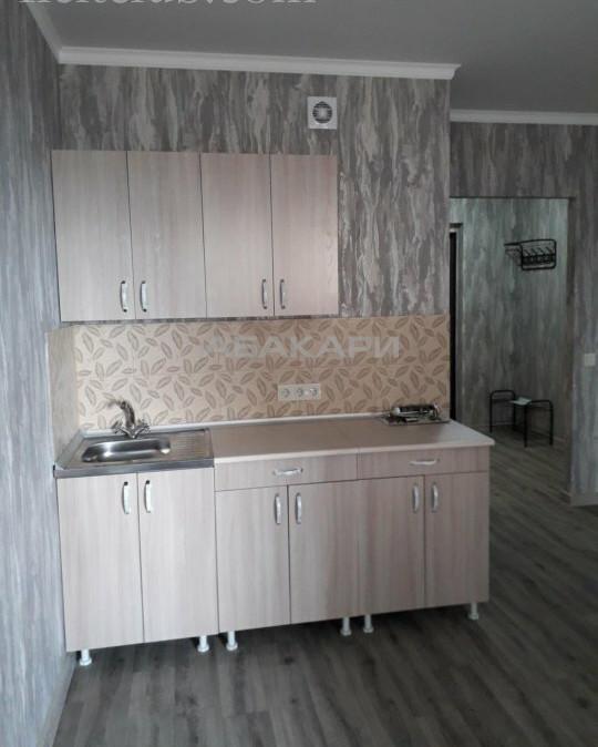 1-комнатная Дудинская Березина за 20000 руб/мес фото 6