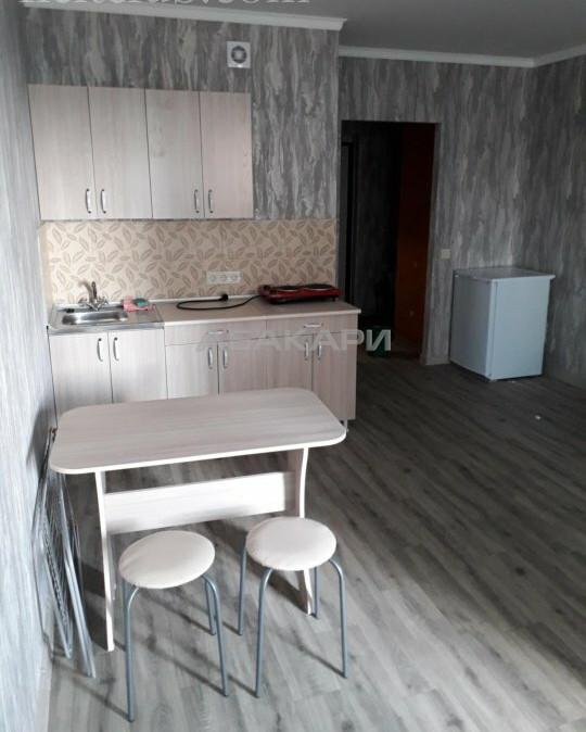 1-комнатная Дудинская Березина за 20000 руб/мес фото 3