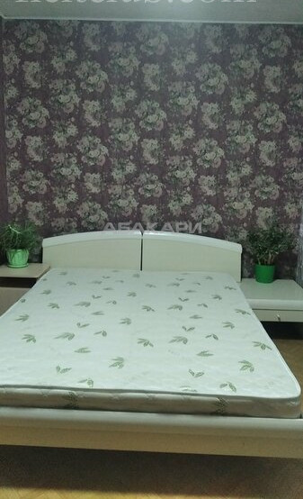 2-комнатная Словцова Ветлужанка мкр-н за 18000 руб/мес фото 8