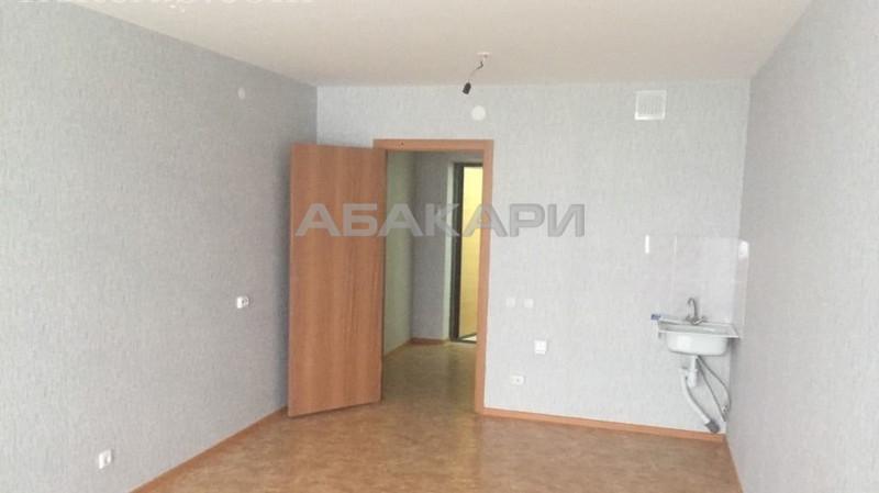 1-комнатная Карамзина Утиный плес мкр-н за 13000 руб/мес фото 1