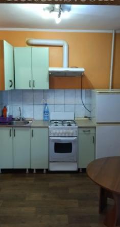 1-комнатная Анатолия Гладкова Предмостная площадь за 14000 руб/мес фото 3