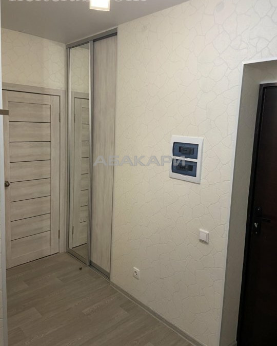 1-комнатная Алексеева Взлетка мкр-н за 24000 руб/мес фото 2